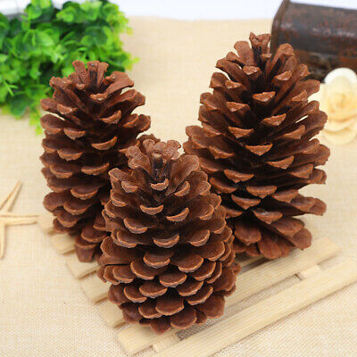 15CM Large Natural Pine Cone Christmas Tree Decor Xmas Party Home Ornaments US