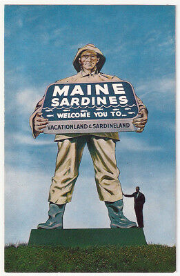 Giant Sardine Fisherman Maine Marine Sardine Vacation land Vintage Postcard