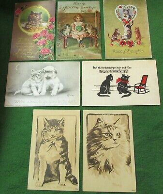 3}  7 Old Post Cards  w/ Kittens / Cats