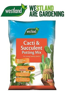 2x Westland Cacti/Succulent Potting Compost Mix and Enriched with Seramis 4 L