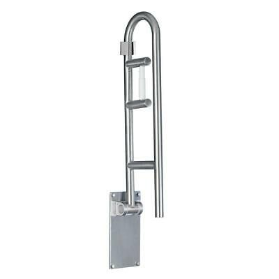 """MOEN 30"""" x 1-1/4"""" Flip-up Screw Grab Bar with Paper Holder in Peened Stainless"""