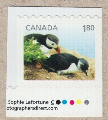 PUFFINS = 1.80 stamp cut from BKLT with color marks Canada 2014 #2716 MNH-VF