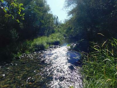 California 20 arce Mining claim Claims East Fork Salmon River !! Land,GREAT GOLD