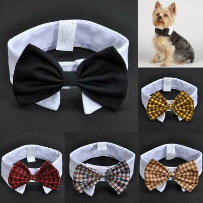 Adjustable Necklace Bow Tie Dog Cat Leather Collars Puppy Kitten Pet Accessories