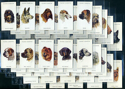 PLAYERS Cigarette Card Set - DOGS' HEADS by Peter Biegel - Circa 1955 Unissued