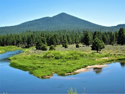 10.00 Ac~Oregon Land~Gorgeous Ranch~Near California~Creek~Meadowed~Timber~No Res