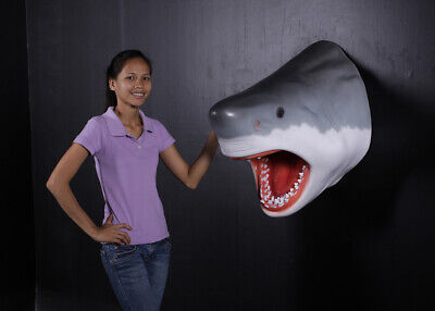 Great White Sharks Head wall mount