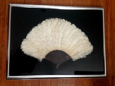 Large antique Ostrich feather & tortoise shell hand fan framed