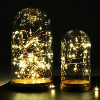 100 LEDs Battery Operated Mini LED Copper Wire String Fairy Lights 10M
