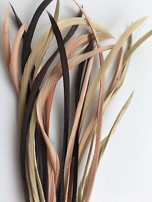 Biots Goose Feather Neutral 20pcs Natural Colors Long Thin Elegant Millinery