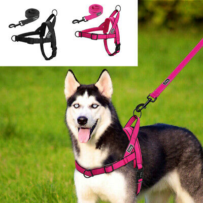No Pull Adjustable Dog Pet Vest Harness Leash Set No Choke for Small Large Dogs
