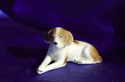 Antique Porcelain Brown White Nice GErmany Sporting Dog Pointer paws crossed *