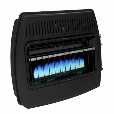 Dyna-Glo GBF30DTDG-2 LP/NG Dual Fuel Blue Flame Vent Free Thermostatic Garage