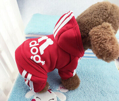 Dog Clothes Cute Medium M Blue ORIGINAL Adidog Hoodies Male Summer Apparel