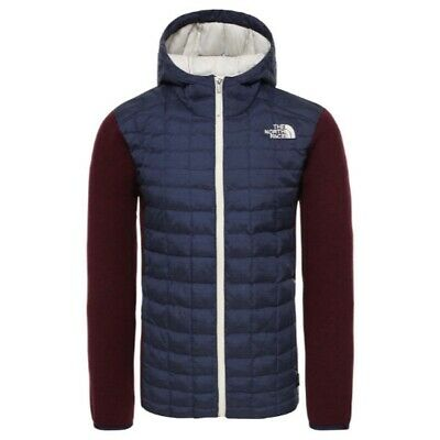 THE NORTH FACE Thermoball Gordon Lyons Hoodie TNF BlackGrey