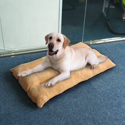 Thick Warm Orthopedic Dog Bed Pillow Plush Large Pet Lounger for Crate Foam Mat