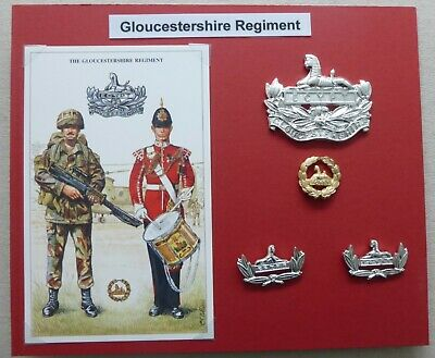 JW340 BRAND NEW THE ROYAL REGIMENT OF GLOUCESTERSHIRE /& HAMPSHIRE BADGE