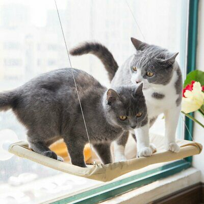 Window Mounted Cat Bed Suction Cup Hanging Pet Sunshine Hammock Perch 3H