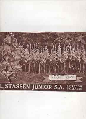 Catalogue L. Stassen Junior Hillegom Hollande 1949 Oignons à fleurs, bulbes