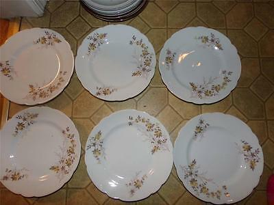 Lot Of 6 Austria Plates Dainty Flowers In Tan/Brown Great For Fall