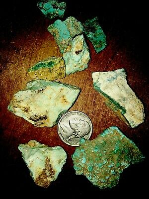 zuni turquoise Natural Raw Stone!!