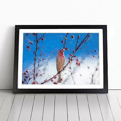 House Finch Bird Flowers Floral Animal Wall Art Framed Picture Print