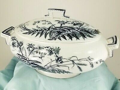 BROWN WESTHEAD MOORE & CO Field Flowers Pattern Blue White Antique Lidded Tureen