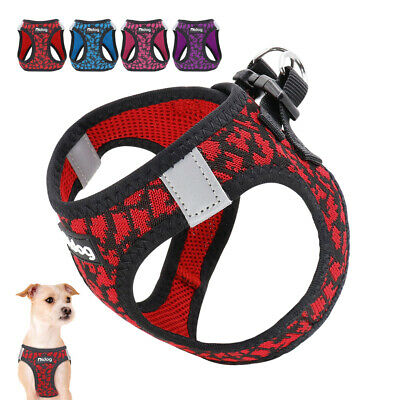 Reflective Kitten Clothes Cat Walking Jacket Small Dog Harness for Toy Poodle