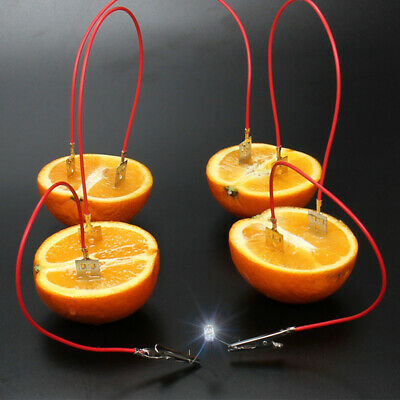 WO_ Fruit Battery Light Diode Generator Science Experiment Kit Student Education