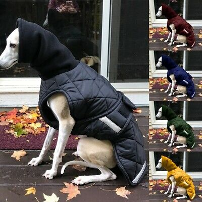 Pet Dog Outdoor Winter Waterproof Clothing Paste Jacket Warm Padded Vest Clothes