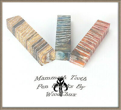 Mammoth Tooth Pen Blank Beautiful Wood Turning Woodturning Exotic Fast Shipping