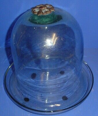 "Clear Glass Cloche Dome H-12.5/"" D-8/"" with Rope /& Wood Base Display Decor 1 PC"