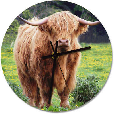275mm 'Highland Cow' Large Wooden Clock (CK00004250)