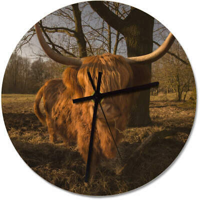 275mm 'Highland Cow' Large Wooden Clock (CK00002564)