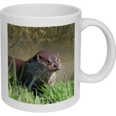 Personalised Cute Otter Funny Mug /& Chocolates Love Birthday Mug Gift Cup VDM05