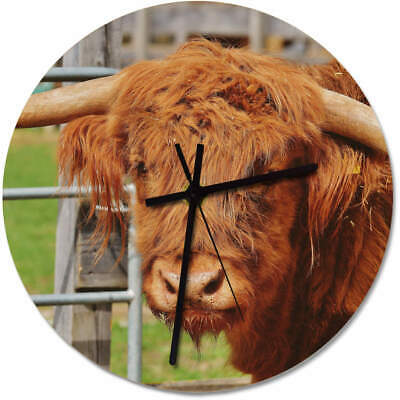 275mm 'Highland Cow Head' Large Wooden Clock (CK00016978)