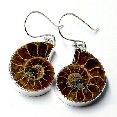 Pure Ammonite Fossil 925 Sterling Silver Plated Handmade Jewelry Earring 12 Gm