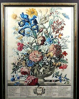 Vintage Print THE FLOWERS OF JUNE Printed For John Bowles At Mercers Hall 17x13