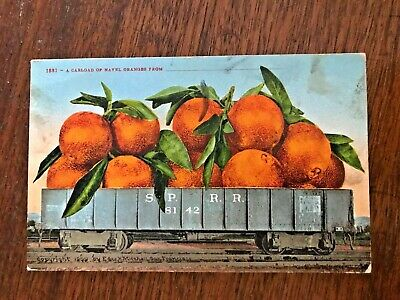 VINTAGE POSTCARD: Carload of Navel Oranges.  First year of 1909 copyright notice