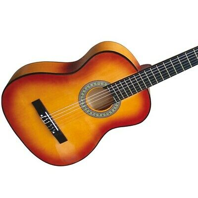 Acoustic Guitar for Beginners and Hobby Musicians Musical Instruments
