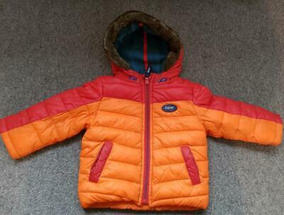 Boys Padded, Lined, Hooded Coat/Puffa Jacket From Ted Baker, 9-12 Months