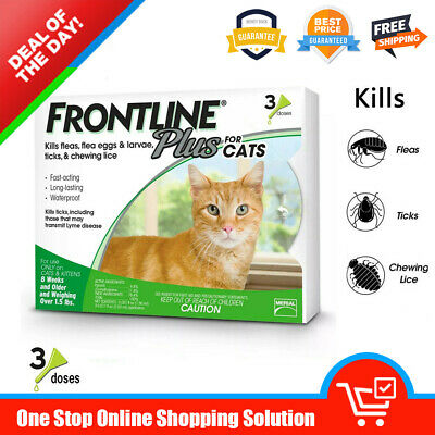Frontline Plus for Cats Over 1.5 lbs Flea and Tick Control and Treatment 3 Doses