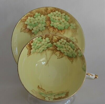 Hydrangea on Yellow Double Warrant Paragon Tea Cup and Saucer Set