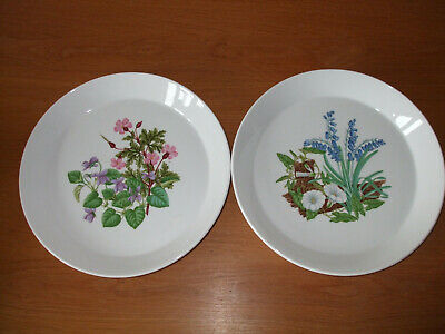Pair of Spode flower pattern decorative 24cm bone china plates - perfect cond.