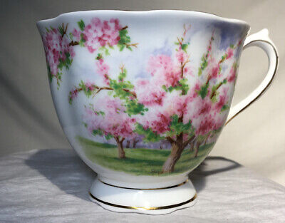 Royal Albert Bone China England Blossom Time Tea Cup Estate Find