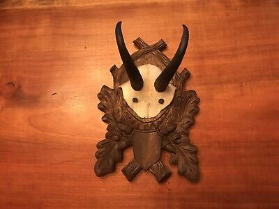 Antique Black Forest Carved Chamois Mount With Oak Leaves & Acorns