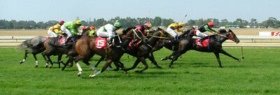 Huge Collection Of Horse Racing trading Betting systems Betfair Betting Gambling