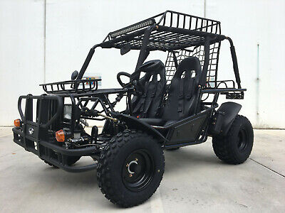 Off Road Dune Buggy Synergy Hunter 200Cc Farm Go Cart Utv Atv Quad Side X Side
