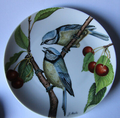Beautiful Vintage Goebel plate  Blaumeise   Blue titmouse and cherries on branch