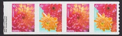 END strip of 4 coil stamps = DAHLIA = GARDEN FLOWERS Hand Cut = MNH Canada 2020
